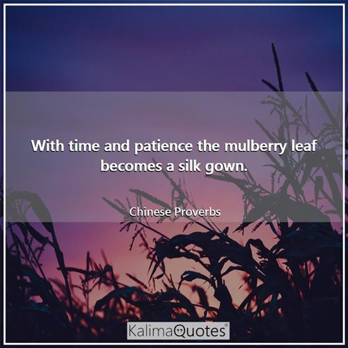 With time and patience the mulberry leaf becomes a silk gown. - Chinese Proverbs