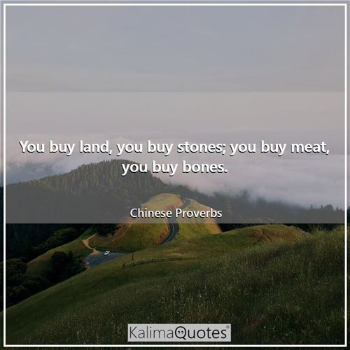 You buy land, you buy stones; you buy meat, you buy bones.
