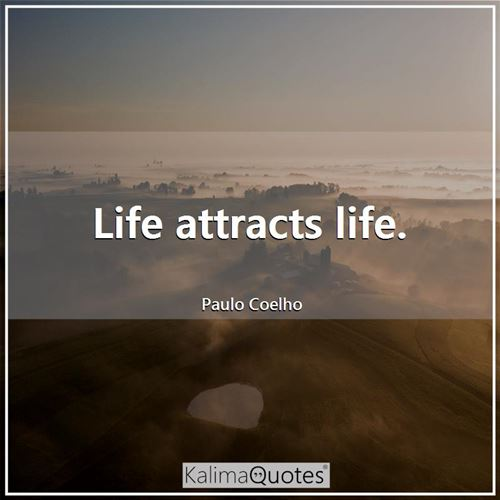 Life attracts life.