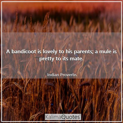 A bandicoot is lovely to his parents; a mule is pretty to its mate.