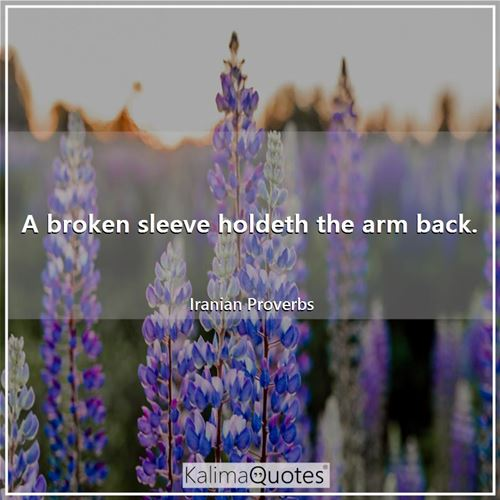 A broken sleeve holdeth the arm back. - Iranian Proverbs