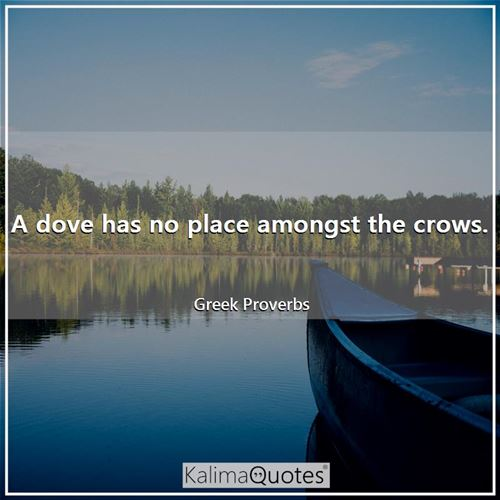 A dove has no place amongst the crows.