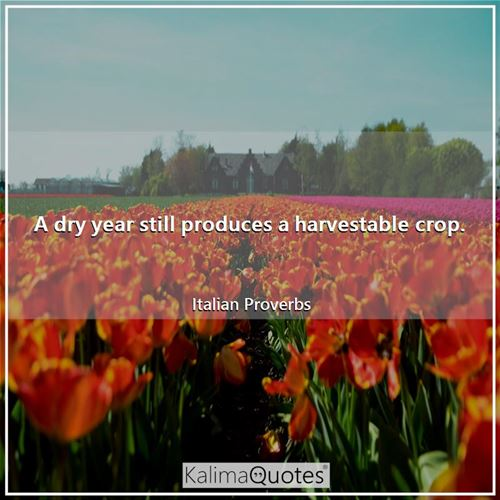 A dry year still produces a harvestable crop.