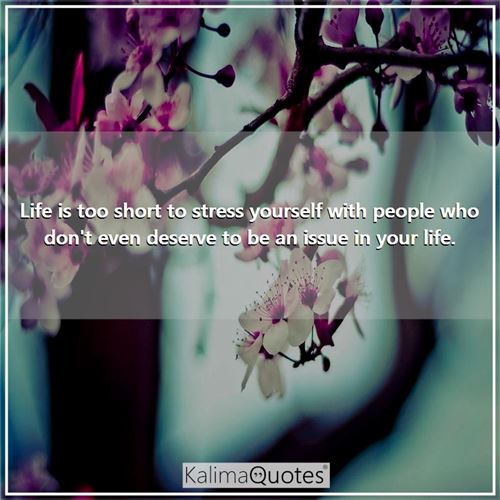 Life is too short to stress yourself with people who don't even deserve to be an issue in your life. -