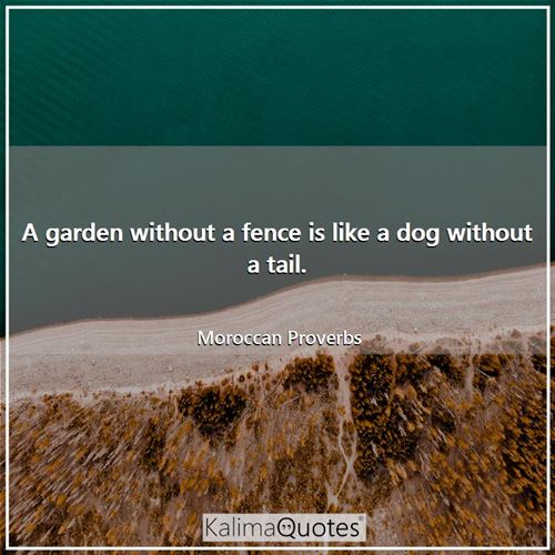 A garden without a fence is like a dog without a tail. - Moroccan Proverbs