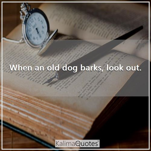 When an old dog barks, look out. -