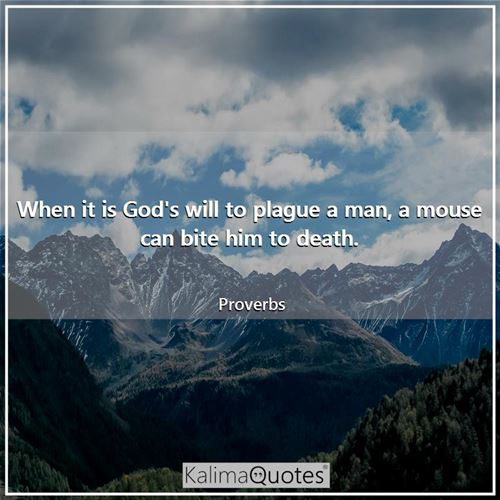 When it is God's will to plague a man, a mouse can bite him to death. - Proverbs
