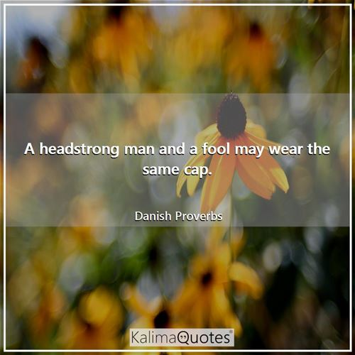A headstrong man and a fool may wear the same cap.