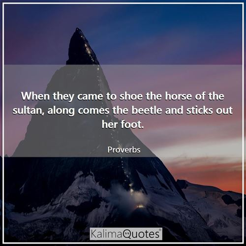 When they came to shoe the horse of the sultan, along comes the beetle and sticks out her foot. - Proverbs