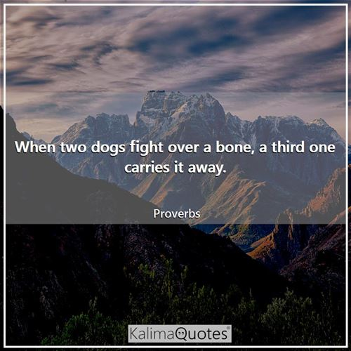 When two dogs fight over a bone, a third one carries it away. - Proverbs