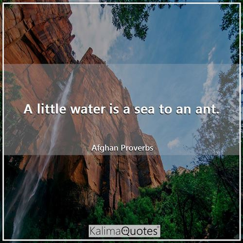 A little water is a sea to an ant. - Afghan Proverbs