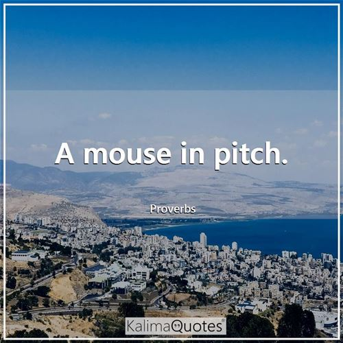 A mouse in pitch. - Proverbs