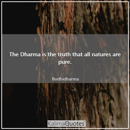 The Dharma is the truth that all natures are pure. - Bodhidharma