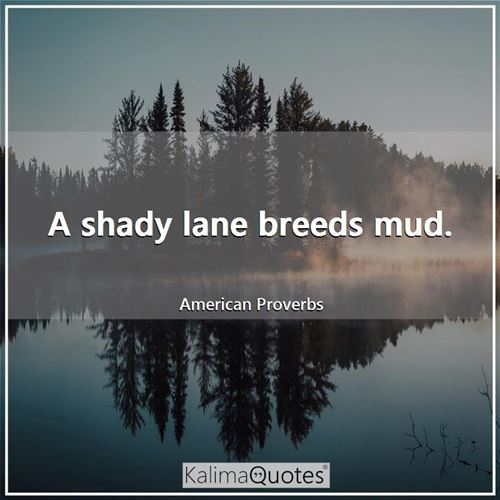 A shady lane breeds mud.