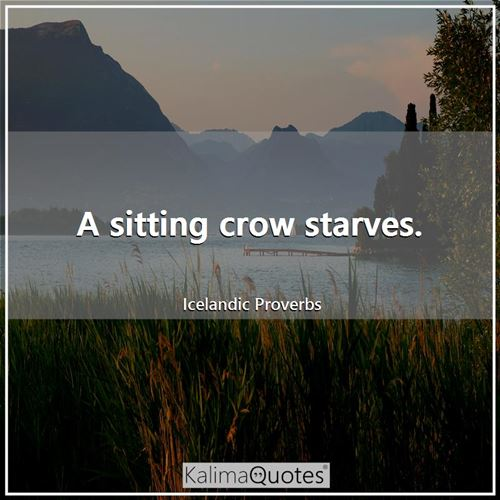A sitting crow starves.