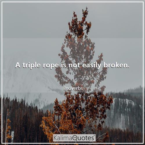 A triple rope is not easily broken. - Proverbs
