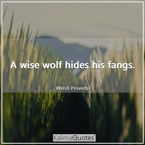 A wise wolf hides his fangs.