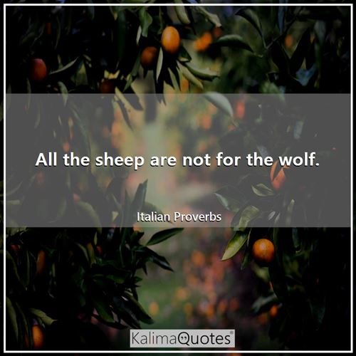 All the sheep are not for the wolf.