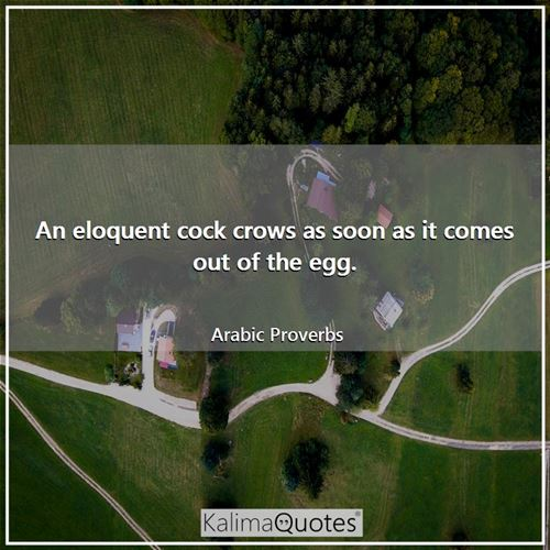 An eloquent cock crows as soon as it comes out of the egg. - Arabic Proverbs