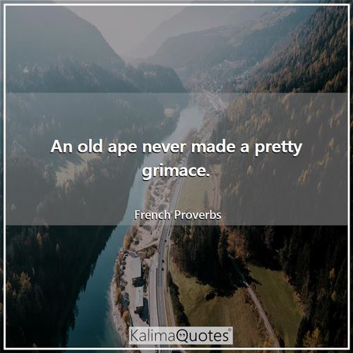An old ape never made a pretty grimace. - French Proverbs