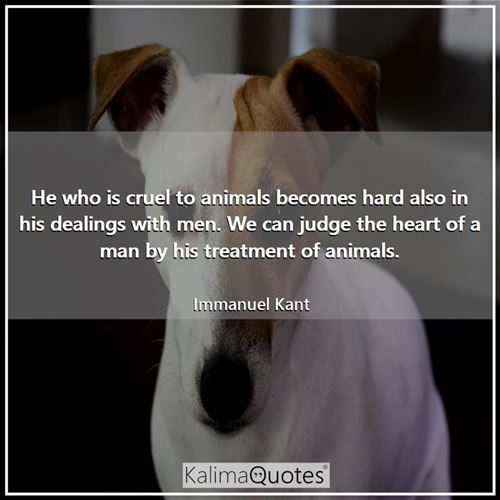 He who is cruel to animals becomes hard also in his dealings with men. We can judge the heart of a man by his treatment of animals.