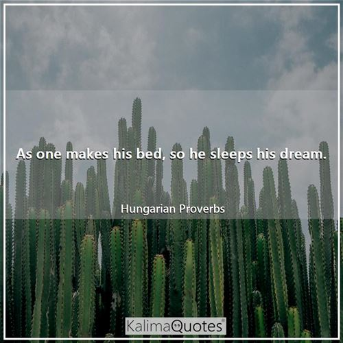 As one makes his bed, so he sleeps his dream. - Hungarian Proverbs