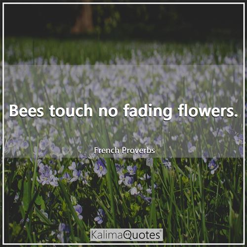 Bees touch no fading flowers.