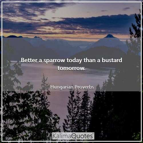 Better a sparrow today than a bustard tomorrow. - Hungarian Proverbs