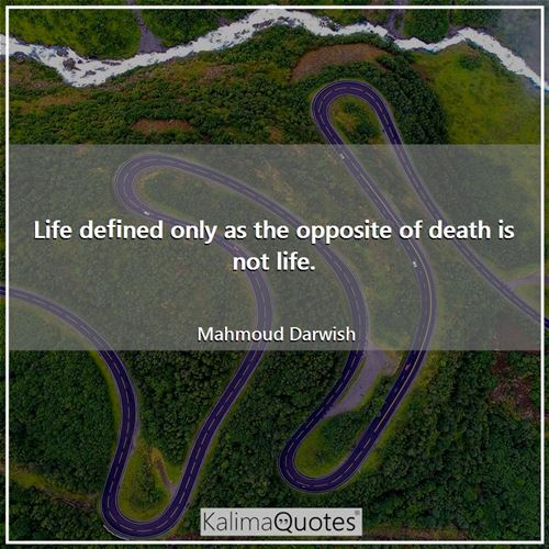 Life defined only as the opposite of death is not life.
