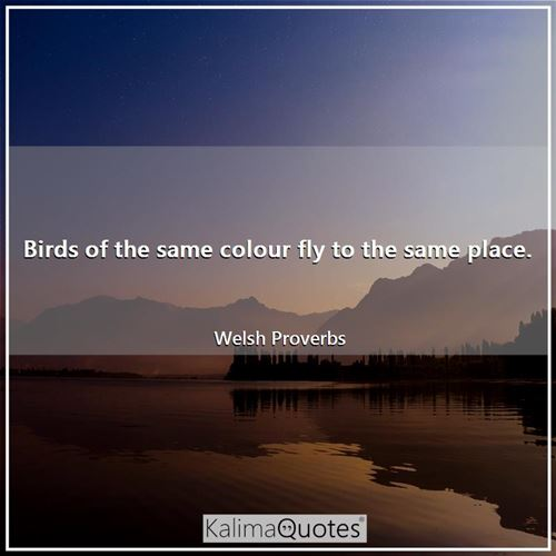 Birds of the same colour fly to the same place.
