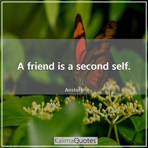 A friend is a second self.