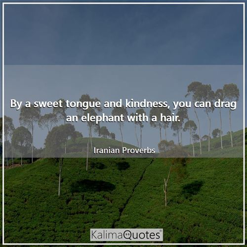 By a sweet tongue and kindness, you can drag an elephant with a hair.