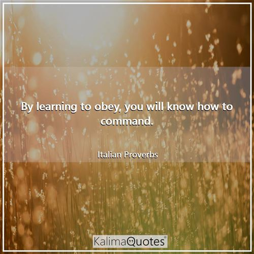 By learning to obey, you will know how to command. - Italian Proverbs