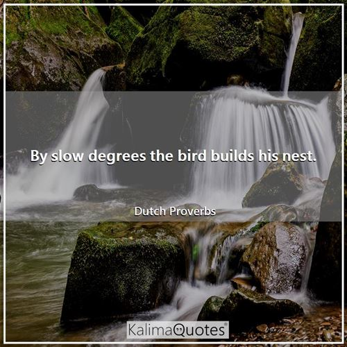 By slow degrees the bird builds his nest. - Dutch Proverbs