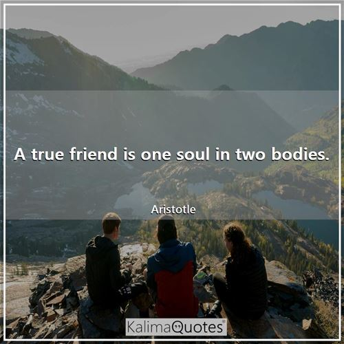 A true friend is one soul in two bodies.