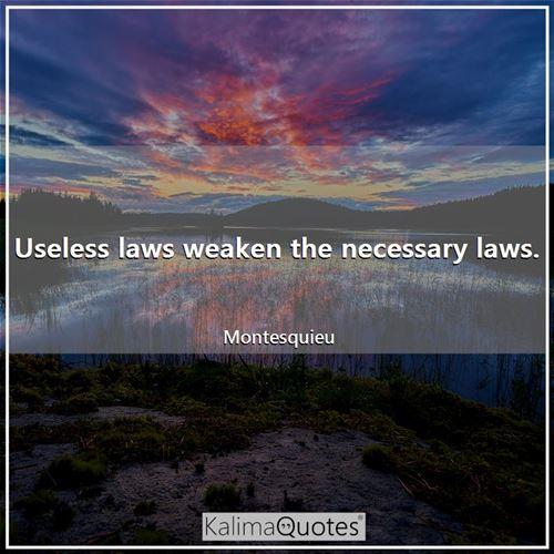 Useless laws weaken the necessary laws.