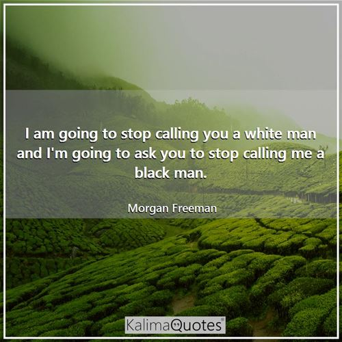 I am going to stop calling you a white man and I'm going to ask you to stop calling me a black man.