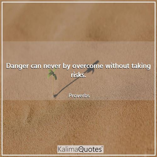 Danger can never by overcome without taking risks.