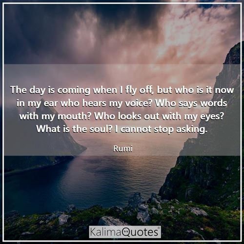 The day is coming when I fly off, but who is it now in my ear who hears my voice? Who says words with my mouth? Who looks out with my eyes? What is the soul? I cannot stop asking.