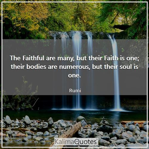 The Faithful are many, but their Faith is one; their bodies are numerous, but their soul is one.