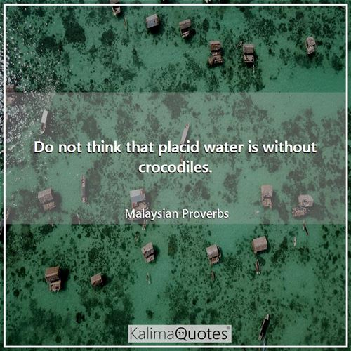 Do not think that placid water is without crocodiles.