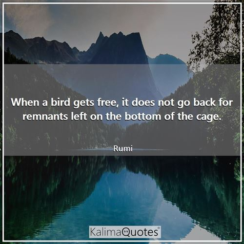 When a bird gets free, it does not go back for remnants left on the bottom of the cage.