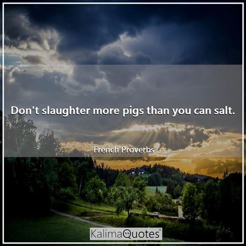 Don't slaughter more pigs than you can salt.