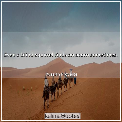Even a blind squirrel finds an acorn sometimes. - Russian Proverbs