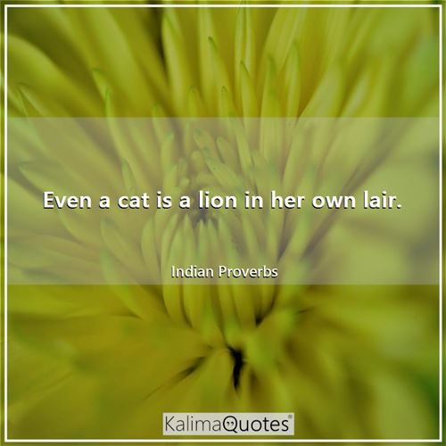 Even a cat is a lion in her own lair.