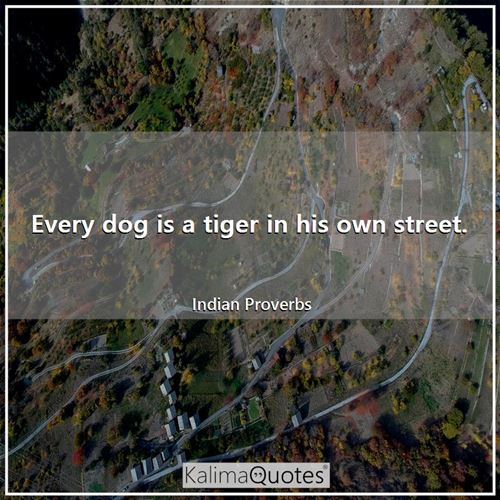 Every dog is a tiger in his own street.