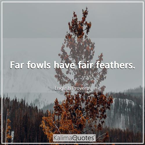 Far fowls have fair feathers.