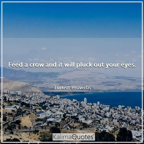 Feed a crow and it will pluck out your eyes.