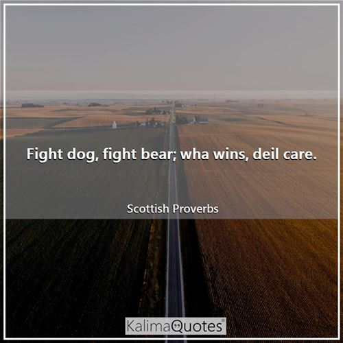 Fight dog, fight bear; wha wins, deil care.