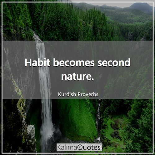 Habit becomes second nature.